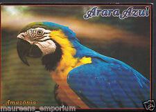 Animals Postcard - Birds - Brasil Turistico, Manaus, Amazonas, Arara Azul RR1183
