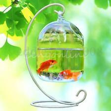Hydroponic Wall Hanging Bubble Aquarium Fish Glass DIY Pot Vase Plant Home Decor