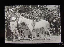 Glass Magic Lantern Slide MAN WITH A HORSE NO2 C1910 INDIA ?