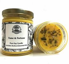 Fame & Fortune Soy Spell Candle Beauty Success Fame Money Hoodoo Wiccan Pagan