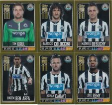 Topps Pro 11 2013/2014 13/14 Newcastle United Set of 6 Gold Foil Reward Cards