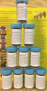 50ml Food Sticks 10 Varieties Selection in Practical Screw Socket - Shrimp Food