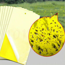 1~10x Yellow Sticky Insect Killer Whitefly Thrip Fruit Fly Gnat Leafminer Trap