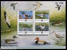 India 2000 Migratory Birds Sc 1834b Pastor Teal Wagta Wildlife M/s MNH # p1768