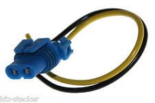 HB4 Lampenfassung Stecker Glühlampen-Sockel Licht Kunststoff Lampenstecker