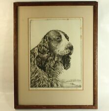 More details for vintage dry point etching cocker spaniel harold thornton
