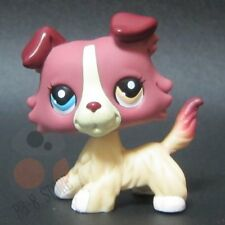 Littlest Pet Shop Collection LPS #1262 Plum Cream Collie Puppy Dog Toys A1