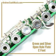Flute - Green & Silver with Open Holes and C Footjoint - Masterpiece