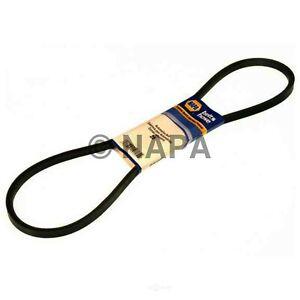 Accessory Drive Belt-RWD NAPA/BELTS & HOSE-NBH 257516
