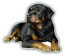 Rottweiler Dog Car Bumper Sticker Decal 5'' x 4''