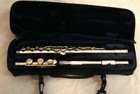 Trevor James TJ10xi flute, beginner, intermediate, student, woodwind, instrument