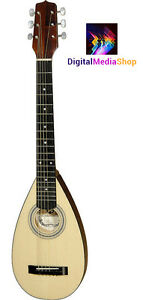 Travel Guitar Steel String Backpacker Acoustic Guitar + Gig Bag