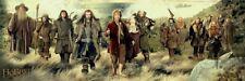 The Hobbit Movie Poster ~ Sunset Cast Door 21x62 Unexpected Journey Gandal Bilbo