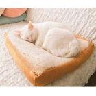 Creative Toast Bread Soft Cat Pet Pillow Sofa Cushion Throw Plush Gift Decor #re