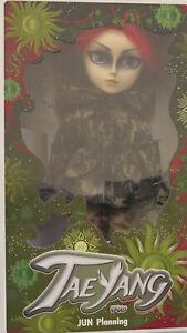 [NIB] JUN PLANNING PULLIP TAEYANG Doll [Number 2]
