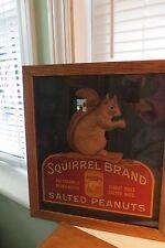 Squirrel Brand Salted Peanuts cardboard advertising sign,framed, old, butter