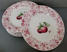 "(6) Pfaltzgraff DELICIOUS 11"" Dinner Plates Red Apple Pink Floral Rim VGC"