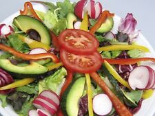 SOW,WATER,EAT ! SALAD/GREENS 5000 + SEEDS * 100 LARGE SALADS 5 CENTS EACH*