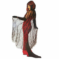 Adult Women's Spider Web Widow Gothic Vampire Halloween Costume Black Lace Cape
