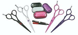 """E-kwip Joy Set Hair Scissors 5,5 """" White,Mini Straightener Sanshin Pro + Box No."""