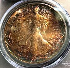 1991 Silver Eagle PCGS MS68 Intense Autumn Tone Scratch-Free Holder CHN!