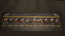 Progression of Perfection Melbourne Cup Champions Makybe Diva Phar Lap Saintly