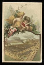 Late 19th C Chromolitho Trade Card William Deering & Co., Chicago, Farm Equipmen