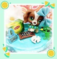 Littlest Pet Shop LPS #156 RARE Brown White Cocker Spaniel Green Eyes AUTHENTIC