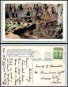 NEW MEXICO Postcard - Carlsbad Caverns, Lily Pads, Big Room Q51