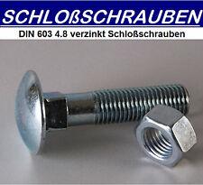DIN 603 Schlossschrauben Edelstahl  V2A 10 St M8x30 mm M 8 Vollgewinde