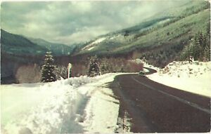 Typical Mountain Highway In Early Seen Through Spring Pacific Northwest Postcard