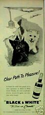 1957 Scottish Terrier Westie Dogs B&W Scotch Whisky Path To Pleasure Print  Ad