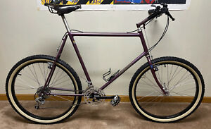 Ritchey Fillet Brazed Competition Mountain Bike