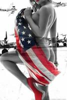 Wrapped Flag Planes by Daveed Benito inch Poster 24x36 inch