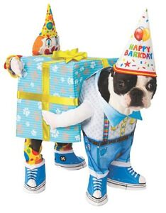 Happy Birthday To You Dog Costume Pet Present Clothes Dress Up Medium