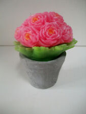 5 inch novelty flowering pink roses scented candle in real pot
