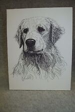 Golden Retriever Pen & Ink Stationary Cards, Note Cards, Greeting Cards.10 pk.