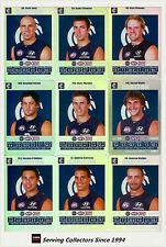 2008 AFL Teamcoach Trading Card Silver Team set Carlton (11)