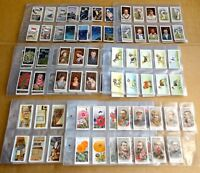 "MULTI-LIST SELECTION OF SLEEVES OF VINTAGE ""WILLS CIGARETTE CARDS""  (B)"