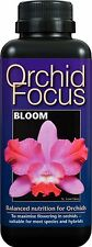 1 LITRO-Orchid Focus Plant Food-Bloom-nutrienti per Orchidee 1L