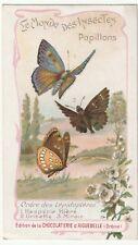 chromo aiguebelle. papillons- hespérides (hière- le miroir - la grisette)