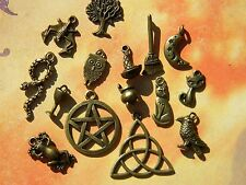 15 WICCAN Charms Mixed BRZ Sampler RAVEN Cat Besom MOON Pentacle Cauldron PAGAN