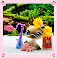 Littlest Pet Shop Black White Siamese Shorthair Cat # 5 Blue Eyes Red Magnet Lps