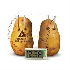 New Potato Clock Novel Green Science Project Experiment Kit kids Lab Home School
