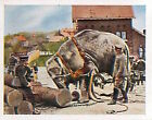 German Soldiers working Elephant Deutsches Heer WWI WELTKRIEG 14/18 CHROMO