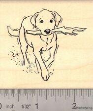Labrador Retriever Dog Rubber Stamp J12614 WM