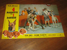 FOTOBUSTA,4 bassotti per 1 danese,The Ugly Dachshund,WALT DISNEY,Dean Jones 1966