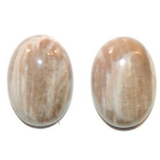 Petrified Wood 13x18mm with 6mm dome set of 2 Cabochons (11789)