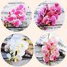 BE_ Artificial Butterfly Orchid Bendable Silk Flower Home Wedding Bouquet Decor