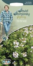 Mr Fothergills - Herb - David Domoney Thyme - 1000 Seeds
